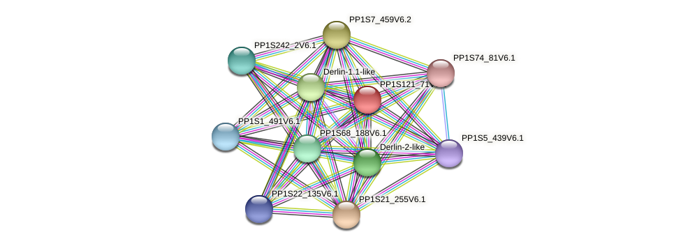 PP1S121_71V6.1 protein (Physcomitrella patens) - STRING interaction network