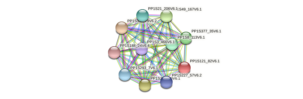 PP1S121_82V6.1 protein (Physcomitrella patens) - STRING interaction network