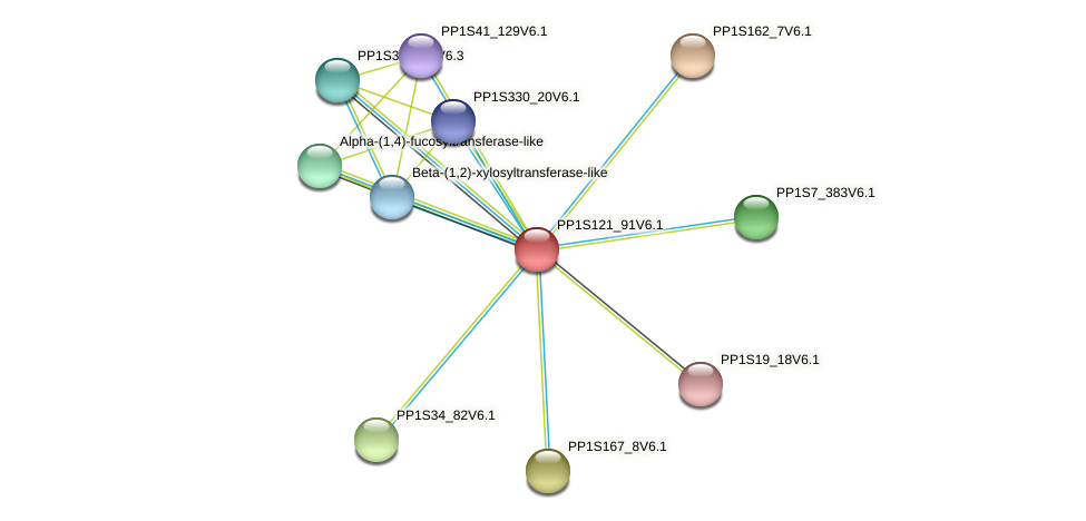 PP1S121_91V6.1 protein (Physcomitrella patens) - STRING interaction network
