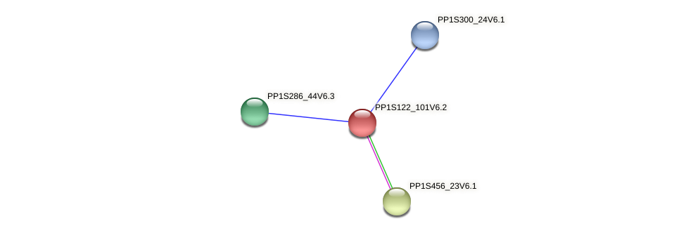 PP1S122_101V6.1 protein (Physcomitrella patens) - STRING interaction network