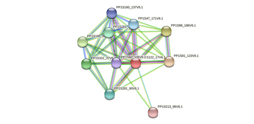 PP1S122_17V6.1 protein (Physcomitrella patens) - STRING interaction network