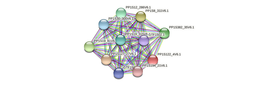 PP1S122_4V6.1 protein (Physcomitrella patens) - STRING interaction network