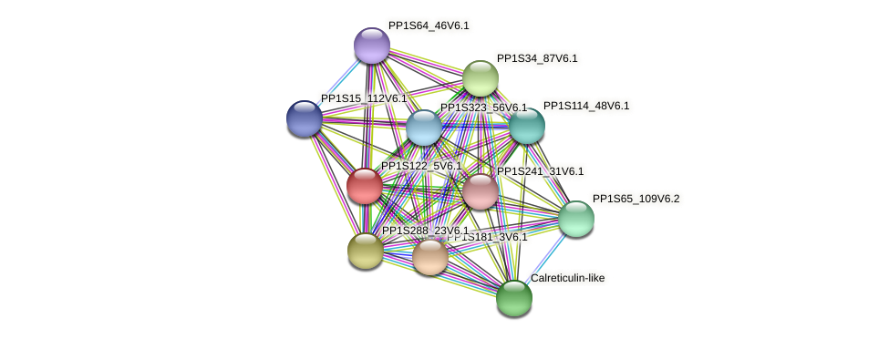 PP1S122_5V6.1 protein (Physcomitrella patens) - STRING interaction network