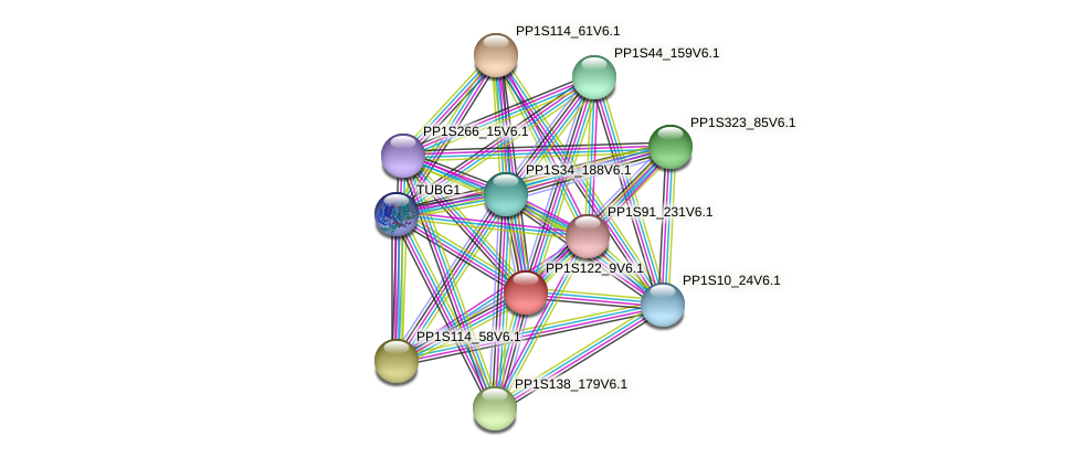 PP1S122_9V6.1 protein (Physcomitrella patens) - STRING interaction network