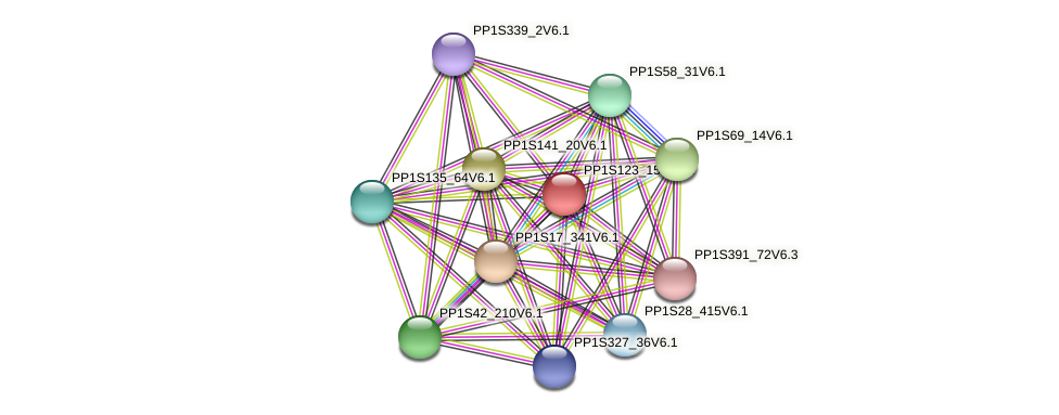 PP1S123_157V6.1 protein (Physcomitrella patens) - STRING interaction network