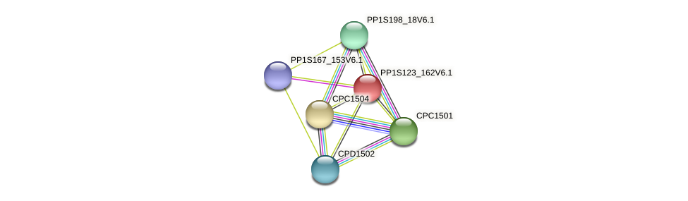 PP1S123_162V6.1 protein (Physcomitrella patens) - STRING interaction network