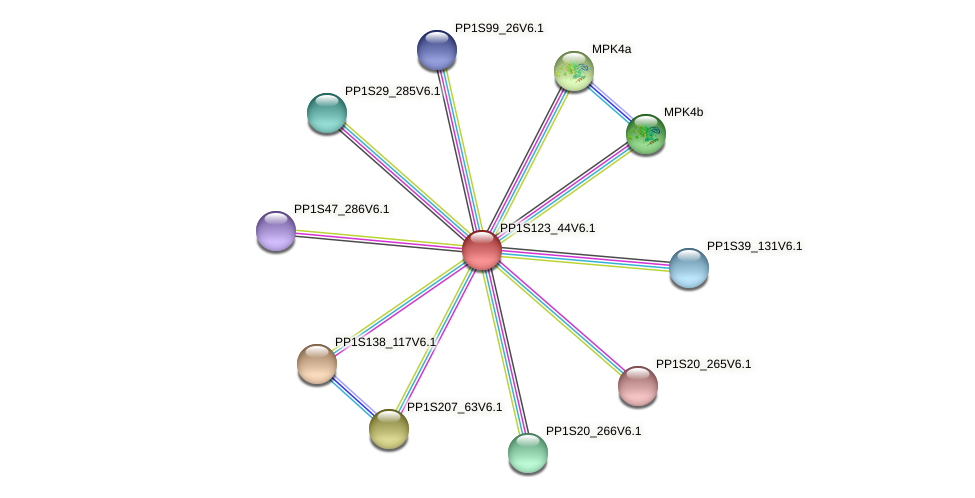 PP1S123_44V6.1 protein (Physcomitrella patens) - STRING interaction network