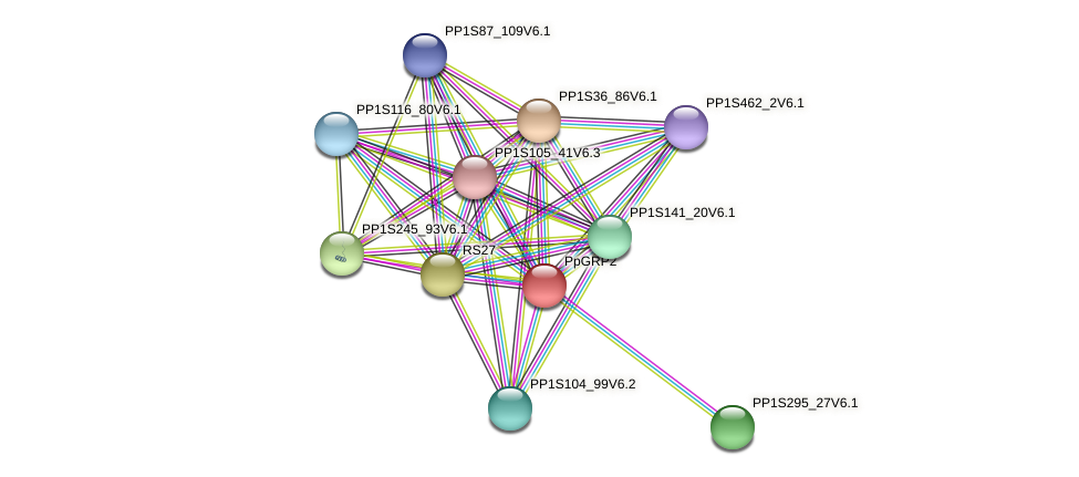PP1S123_58V6.1 protein (Physcomitrella patens) - STRING interaction network