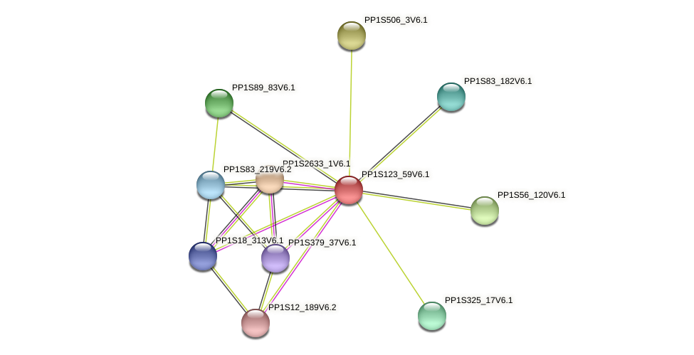 PP1S123_59V6.1 protein (Physcomitrella patens) - STRING interaction network