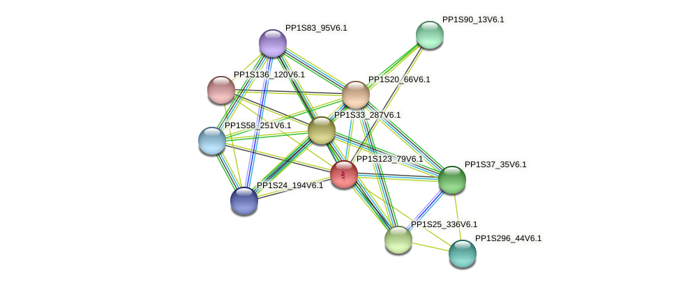 PP1S123_79V6.1 protein (Physcomitrella patens) - STRING interaction network