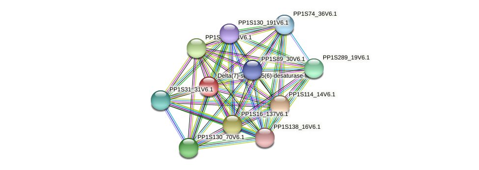 PP1S123_7V6.1 protein (Physcomitrella patens) - STRING interaction network