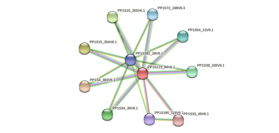 PP1S123_84V6.1 protein (Physcomitrella patens) - STRING interaction network