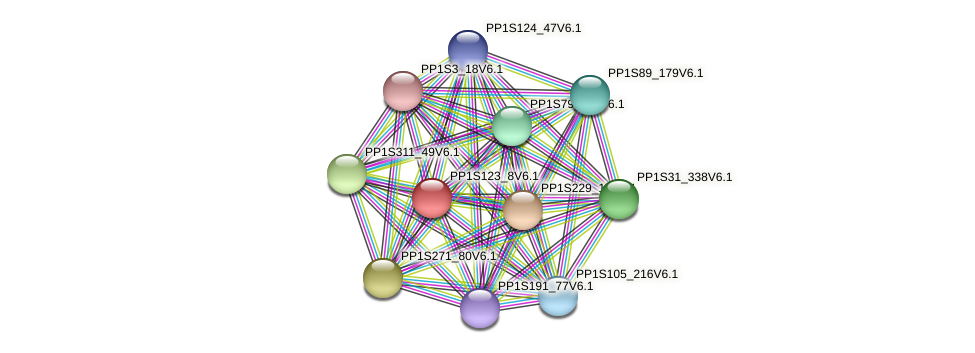 PP1S123_8V6.1 protein (Physcomitrella patens) - STRING interaction network