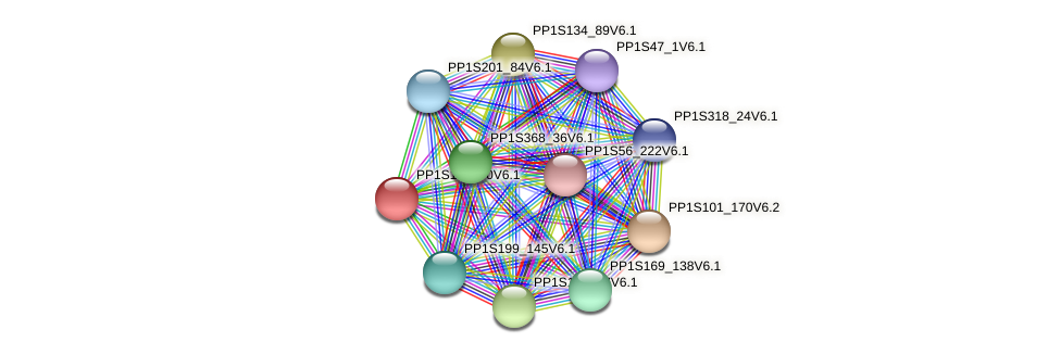 PP1S123_90V6.1 protein (Physcomitrella patens) - STRING interaction network