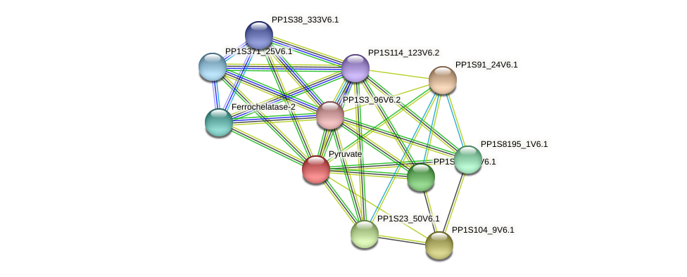 PP1S123_99V6.1 protein (Physcomitrella patens) - STRING interaction network