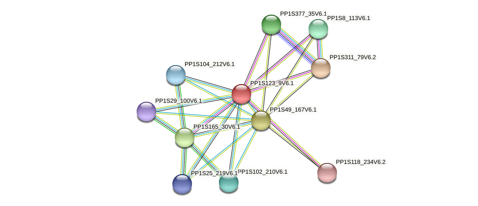 PP1S123_9V6.1 protein (Physcomitrella patens) - STRING interaction network