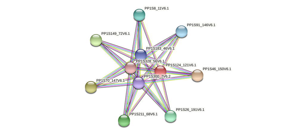 PP1S124_121V6.1 protein (Physcomitrella patens) - STRING interaction network