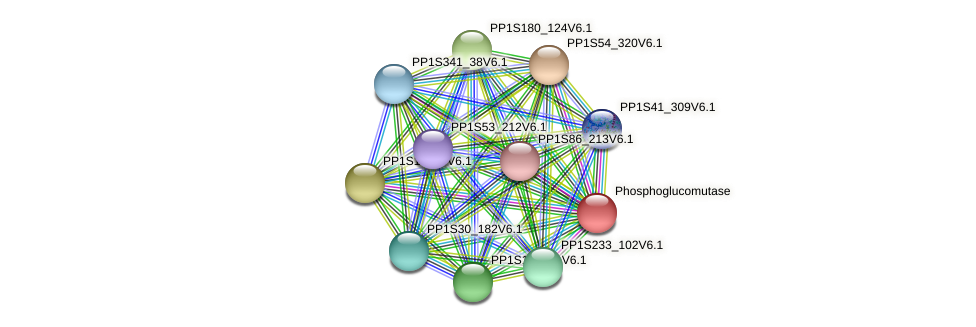 PP1S124_155V6.1 protein (Physcomitrella patens) - STRING interaction network
