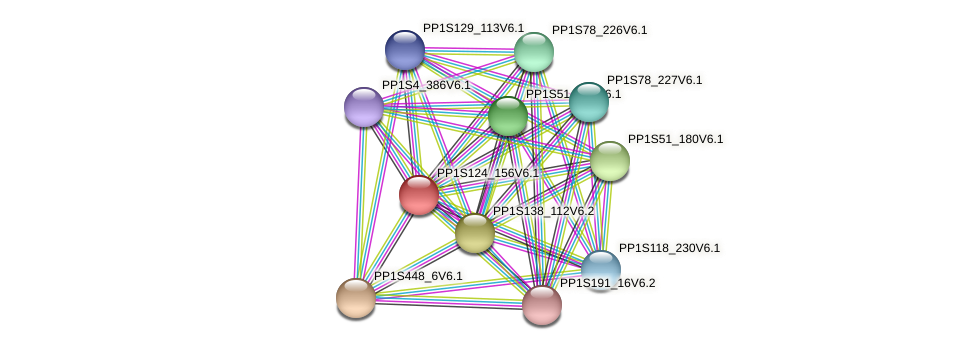 PP1S124_156V6.1 protein (Physcomitrella patens) - STRING interaction network