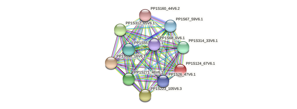 PP1S124_67V6.1 protein (Physcomitrella patens) - STRING interaction network