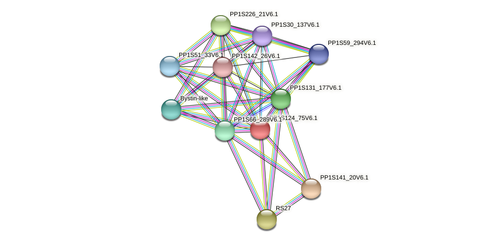 PP1S124_75V6.1 protein (Physcomitrella patens) - STRING interaction network