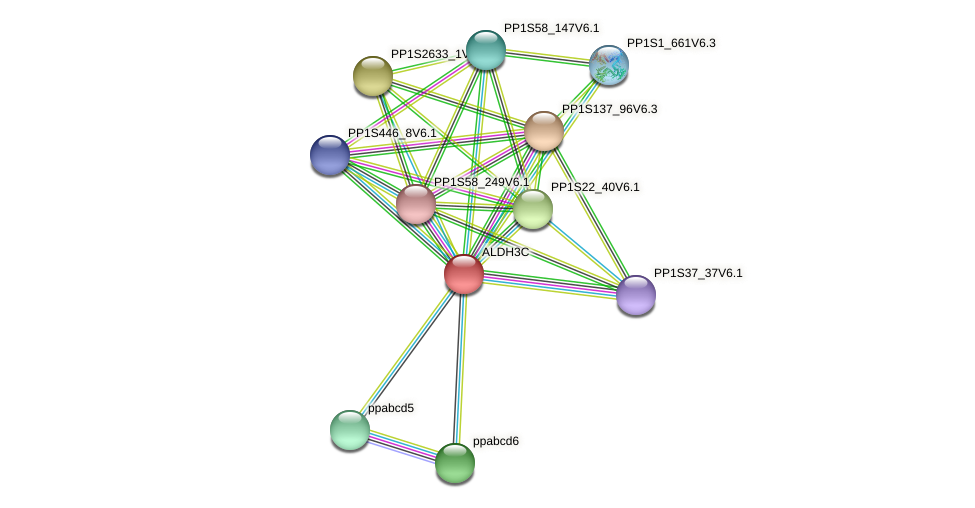 ALDH3C protein (Physcomitrella patens) - STRING interaction network