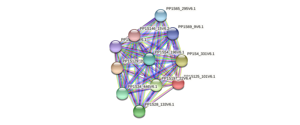 PP1S125_101V6.1 protein (Physcomitrella patens) - STRING interaction network