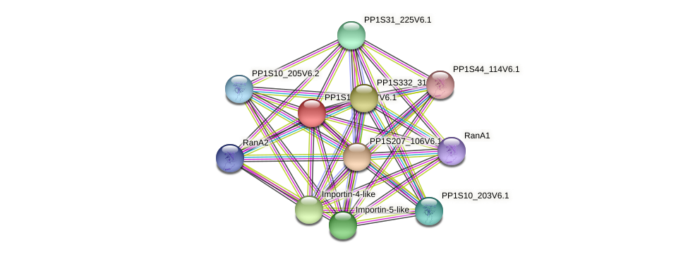 PP1S125_107V6.1 protein (Physcomitrella patens) - STRING interaction network
