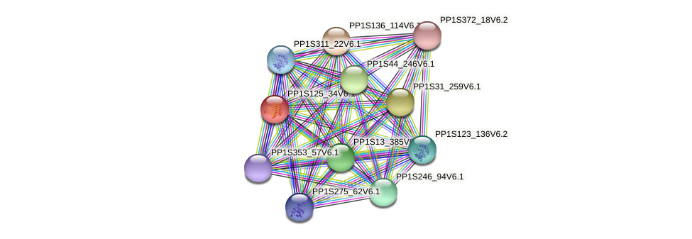PP1S125_34V6.1 protein (Physcomitrella patens) - STRING interaction network