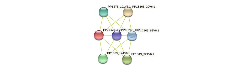 PP1S125_6V6.1 protein (Physcomitrella patens) - STRING interaction network