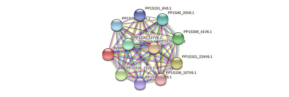 PP1S126_109V6.1 protein (Physcomitrella patens) - STRING interaction network