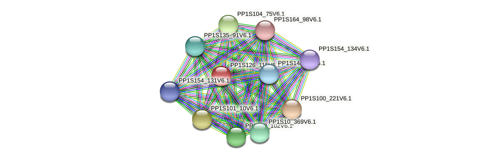 PP1S126_115V6.2 protein (Physcomitrella patens) - STRING interaction network