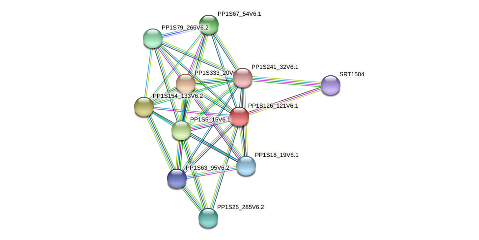 PP1S126_121V6.1 protein (Physcomitrella patens) - STRING interaction network