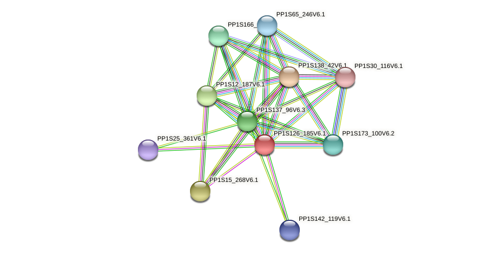 PP1S126_185V6.1 protein (Physcomitrella patens) - STRING interaction network
