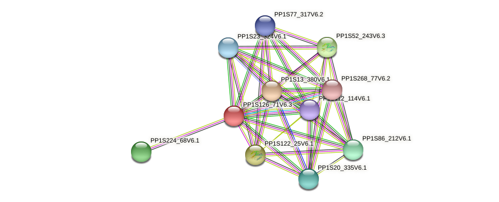 PP1S126_71V6.1 protein (Physcomitrella patens) - STRING interaction network