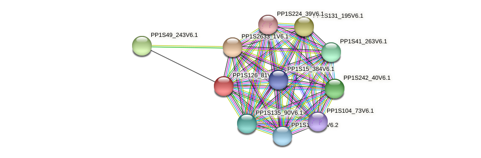 PP1S126_81V6.1 protein (Physcomitrella patens) - STRING interaction network