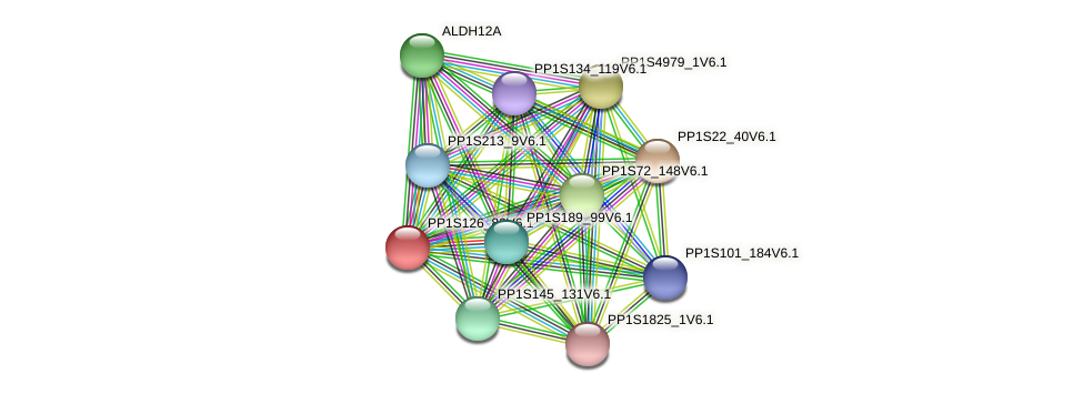 PP1S126_82V6.1 protein (Physcomitrella patens) - STRING interaction network