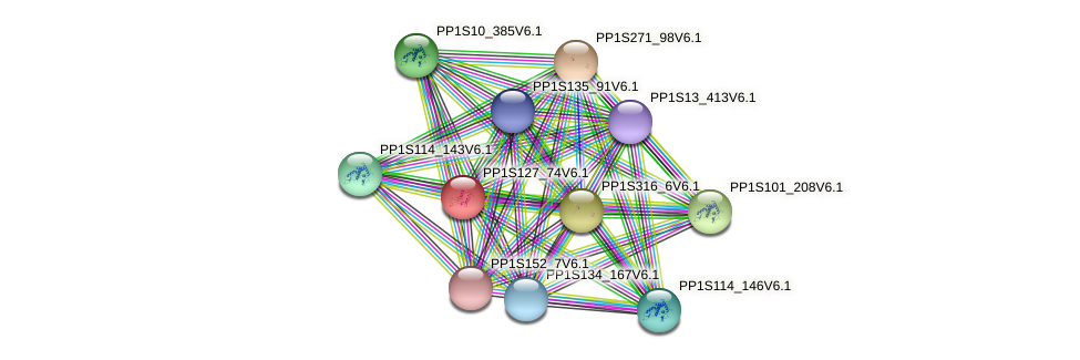 PP1S127_74V6.1 protein (Physcomitrella patens) - STRING interaction network