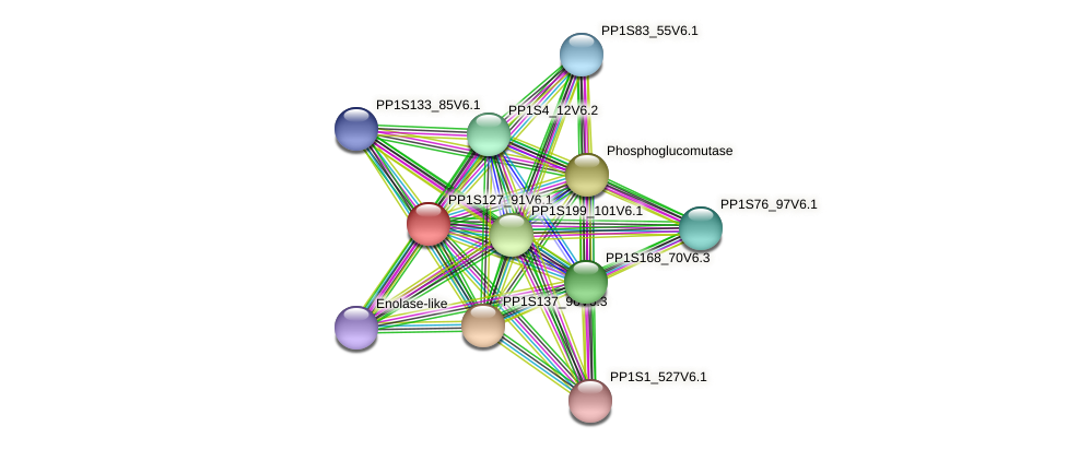 PP1S127_91V6.1 protein (Physcomitrella patens) - STRING interaction network