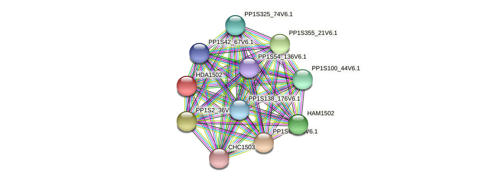 HDA1502 protein (Physcomitrella patens) - STRING interaction network
