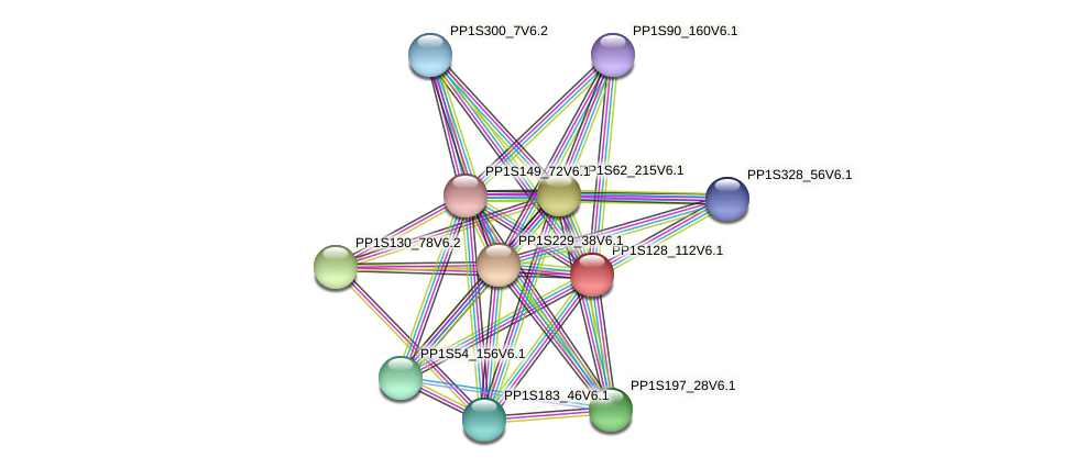 PP1S128_112V6.1 protein (Physcomitrella patens) - STRING interaction network