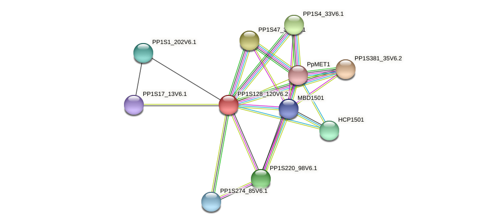 PP1S128_120V6.2 protein (Physcomitrella patens) - STRING interaction network