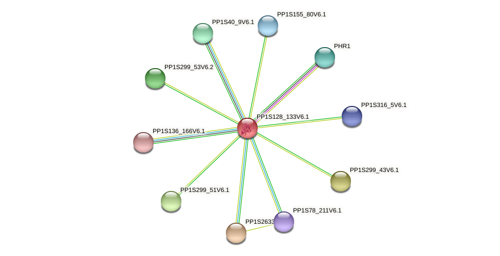 PP1S128_133V6.1 protein (Physcomitrella patens) - STRING interaction network
