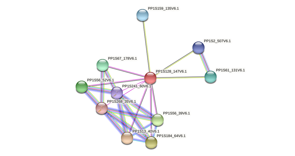 PP1S128_147V6.1 protein (Physcomitrella patens) - STRING interaction network