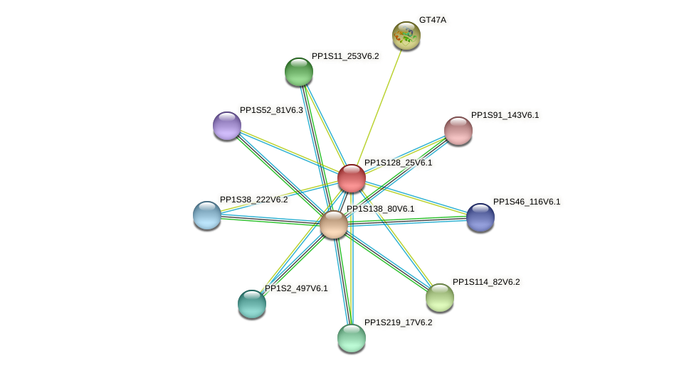 PP1S128_25V6.1 protein (Physcomitrella patens) - STRING interaction network