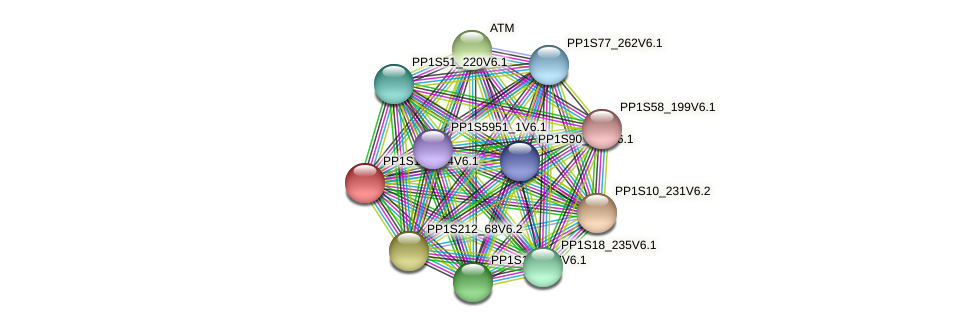 PP1S128_34V6.1 protein (Physcomitrella patens) - STRING interaction network
