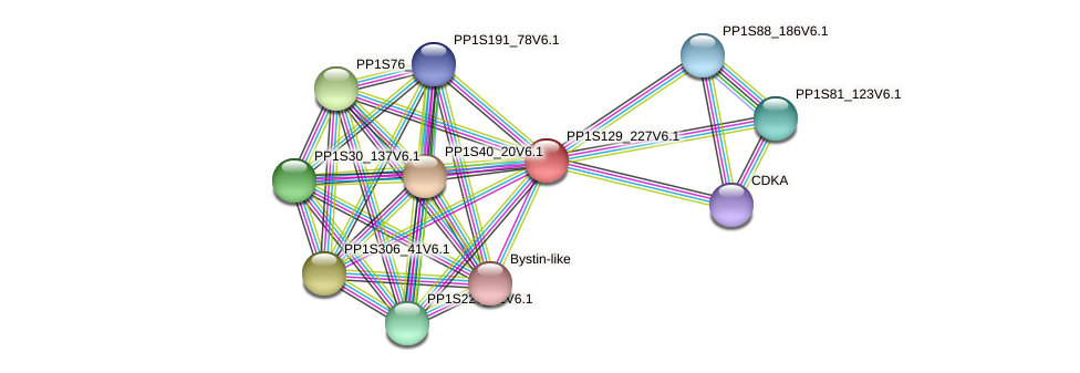 PP1S129_227V6.1 protein (Physcomitrella patens) - STRING interaction network