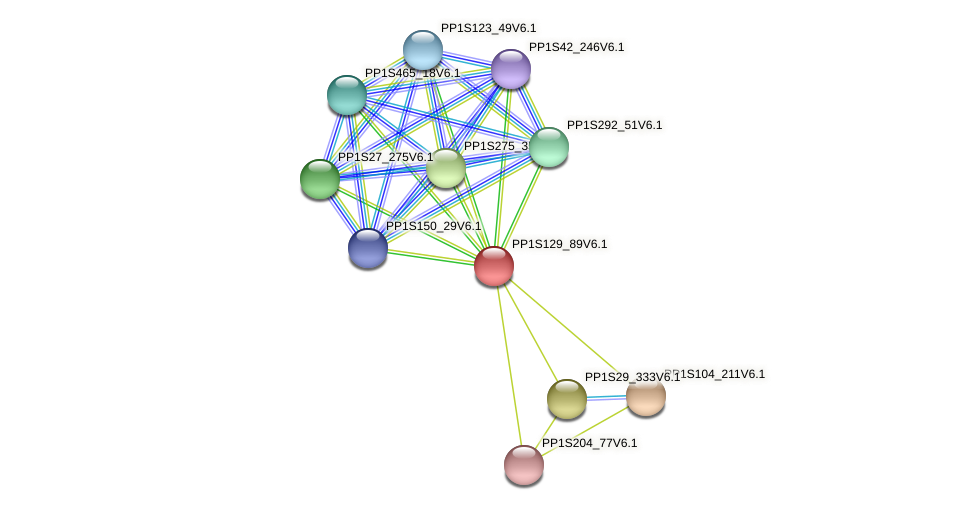 PP1S129_89V6.1 protein (Physcomitrella patens) - STRING interaction network