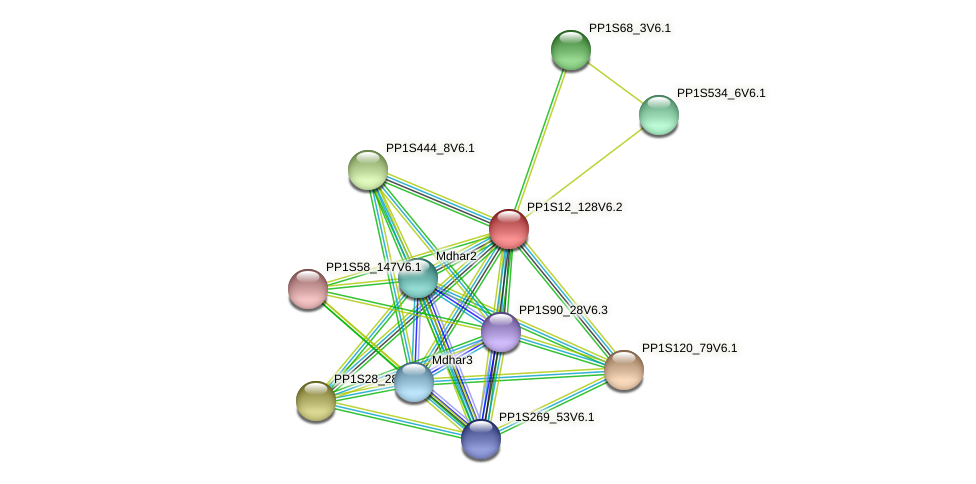 PP1S12_128V6.2 protein (Physcomitrella patens) - STRING interaction network