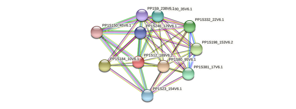 PP1S12_189V6.2 protein (Physcomitrella patens) - STRING interaction network